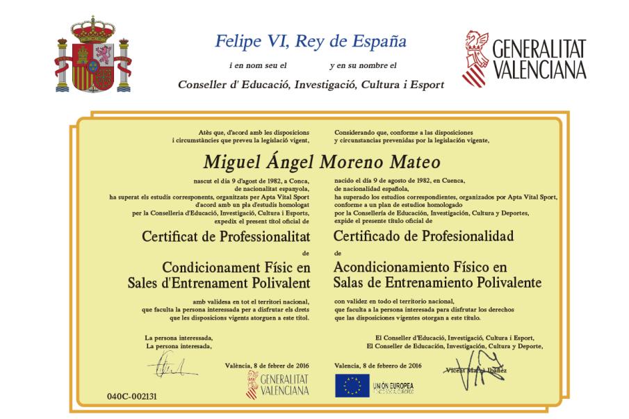 Titulo Certificado oficial Profesional