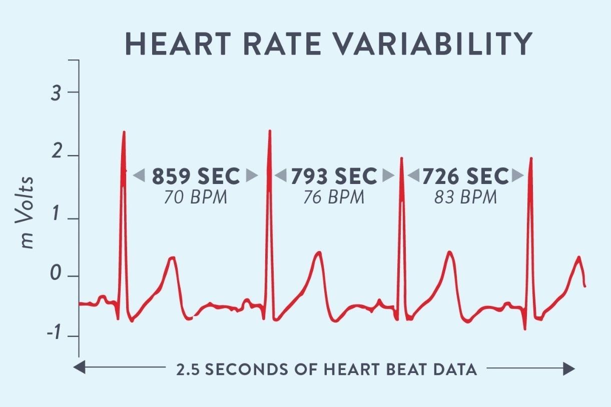 Actividad física y variabilidad de la frecuencia cardíaca