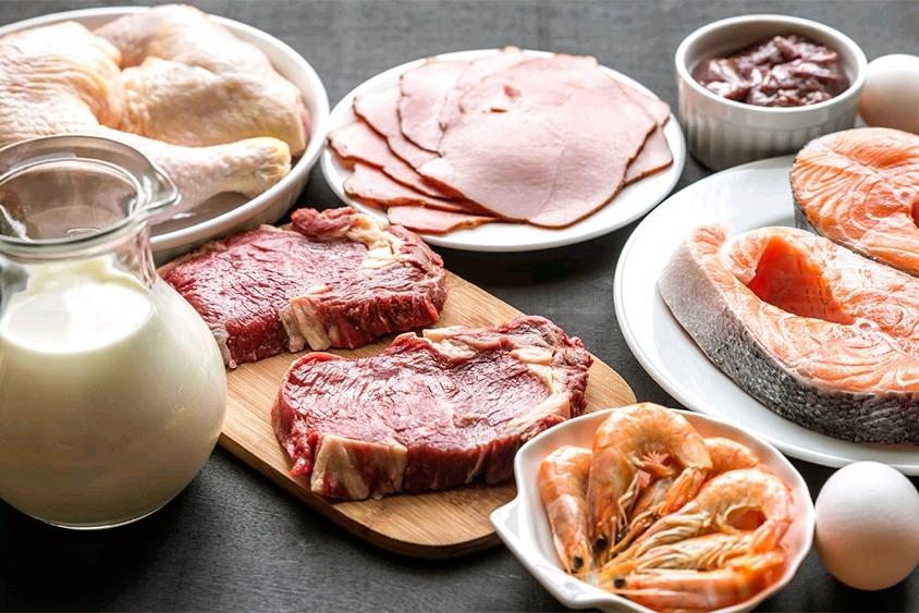 Alimentos ricos en aminoácidos-ramificados de origen animal y vegetal