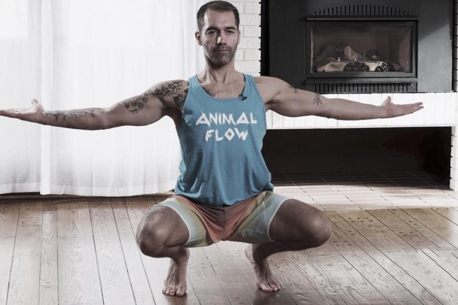 Beneficios del animal flow