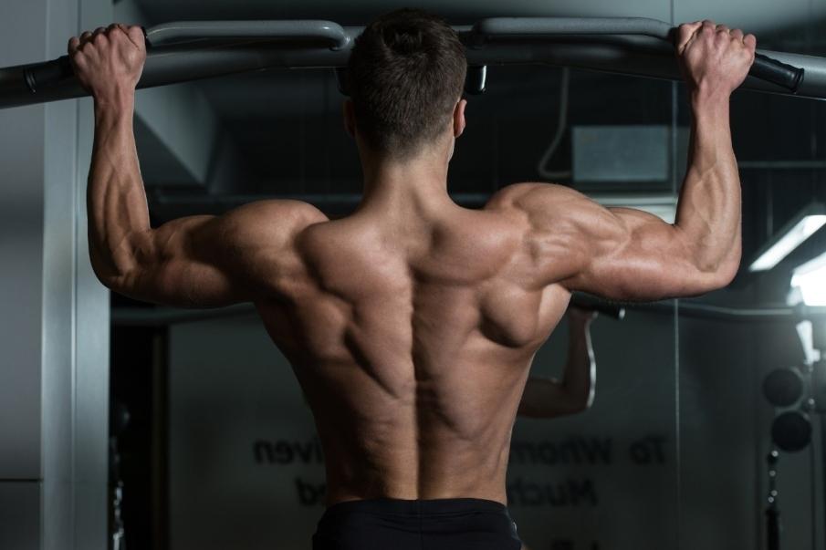 ¿Cómo entrenar la rutina torso pierna? Aprende a planificarla