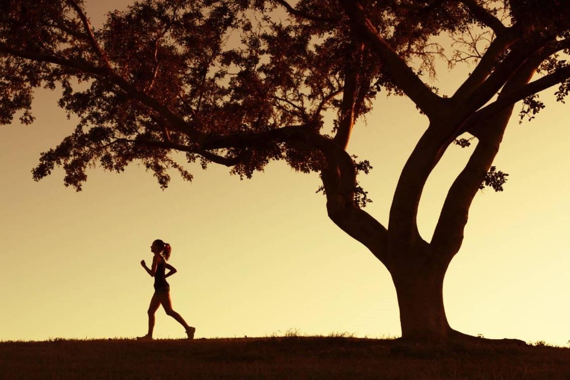 ¿Cómo influye la actividad física en el tratamiento de la hipertensión?