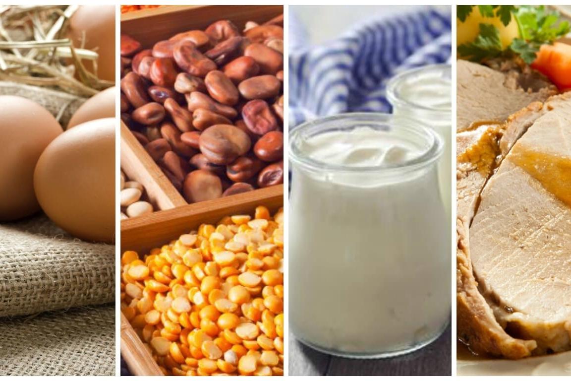 ¿cual mejor la proteína animal que la vegetal?