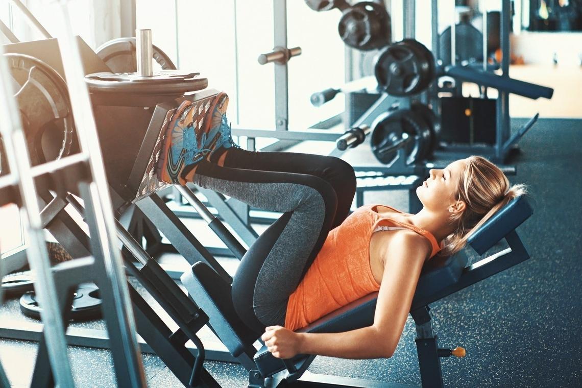 ¿Cuáles son los músculos de las piernas?
