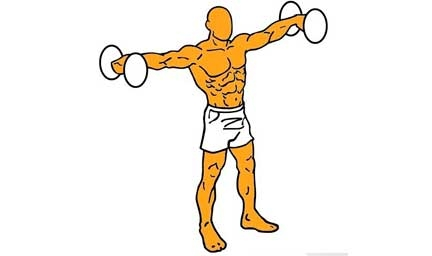 ejercicio-isometrico-elevaciones-de-homb