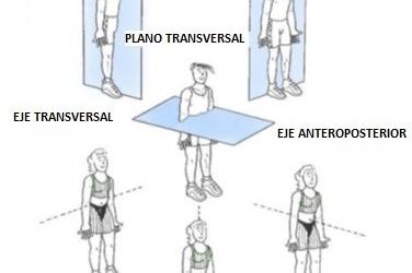 Ejes anatómicos del movimiento