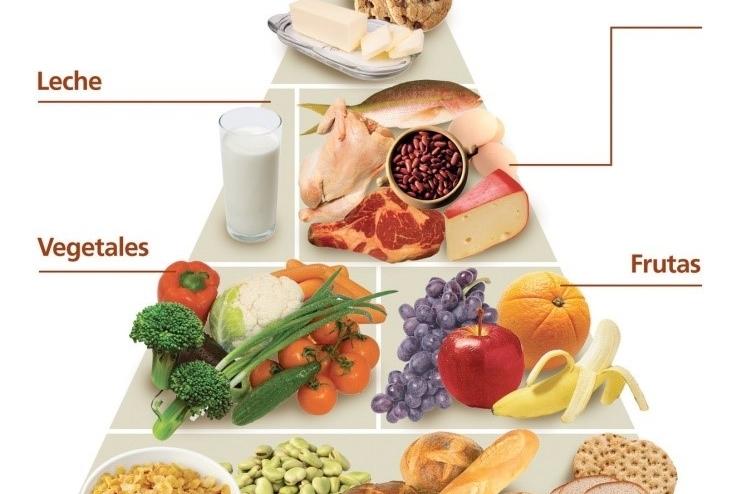 Estructura de la pirámide nutricional