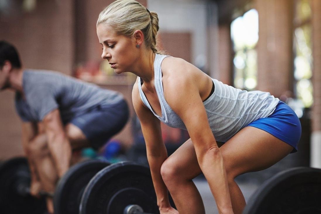 La respuesta del músculo al entrenamiento de fuerza: la adaptación neural
