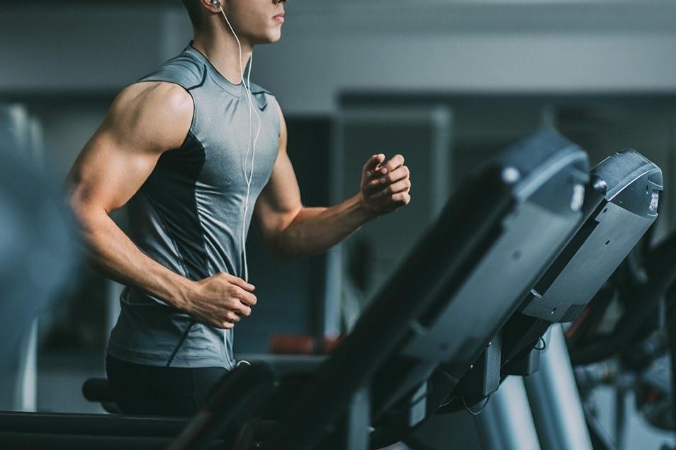 lactoalbúmina ayuda a la creación de la masa muscular