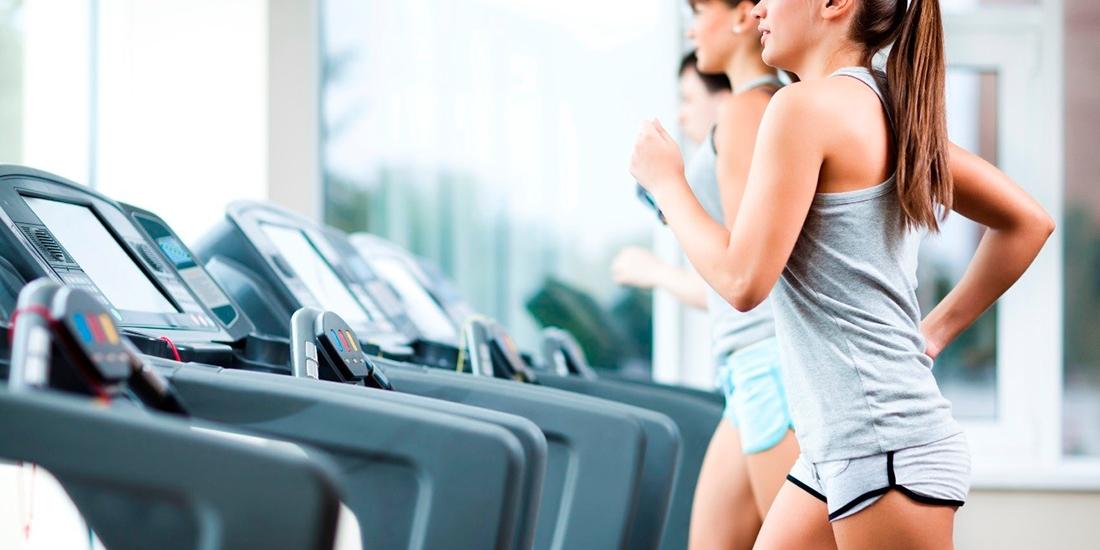 Maquinaria de ejercicio cardiovascular. ¿Qué nos ofrece cada una?