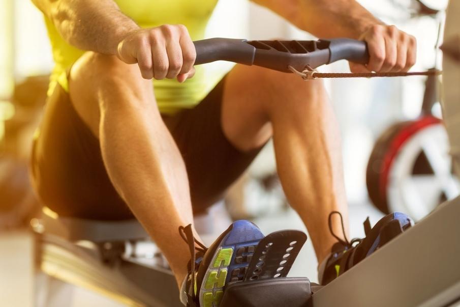 Metabolismo de las proteínas en el ejercicio