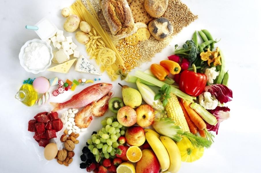 ¿Por qué es tan importante la alimentación?