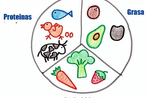 ¿Que es el timing nutricional diario?