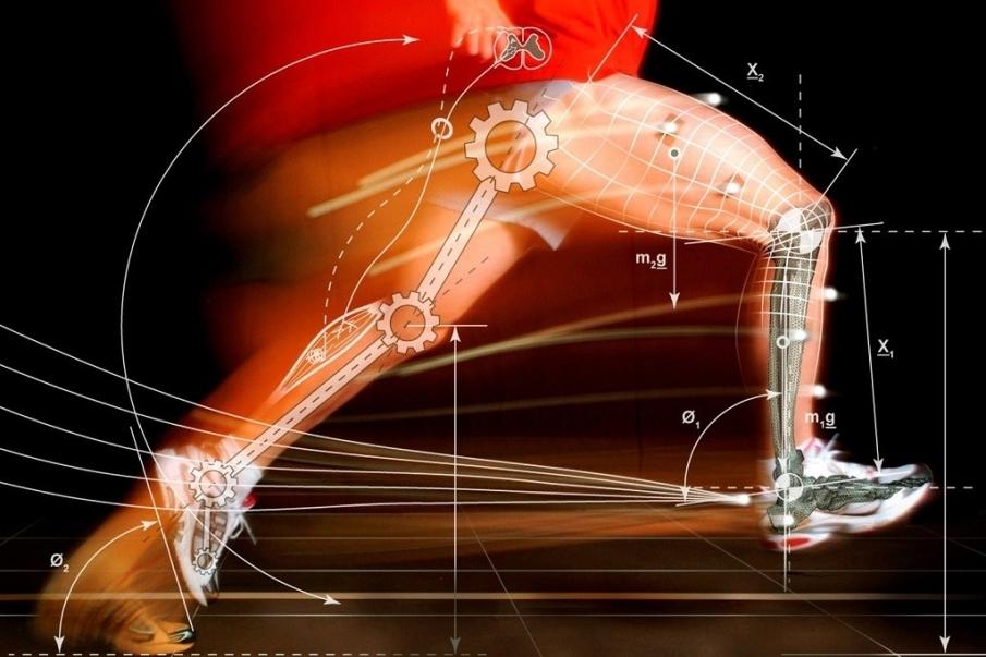 ¿Qué es la biomecánica, y qué importancia tiene en el deporte?