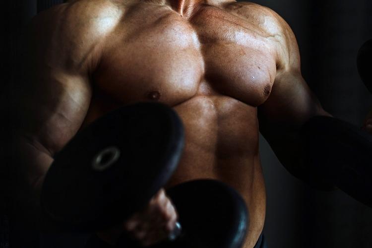 ¿Que es la Inhibición Muscular?