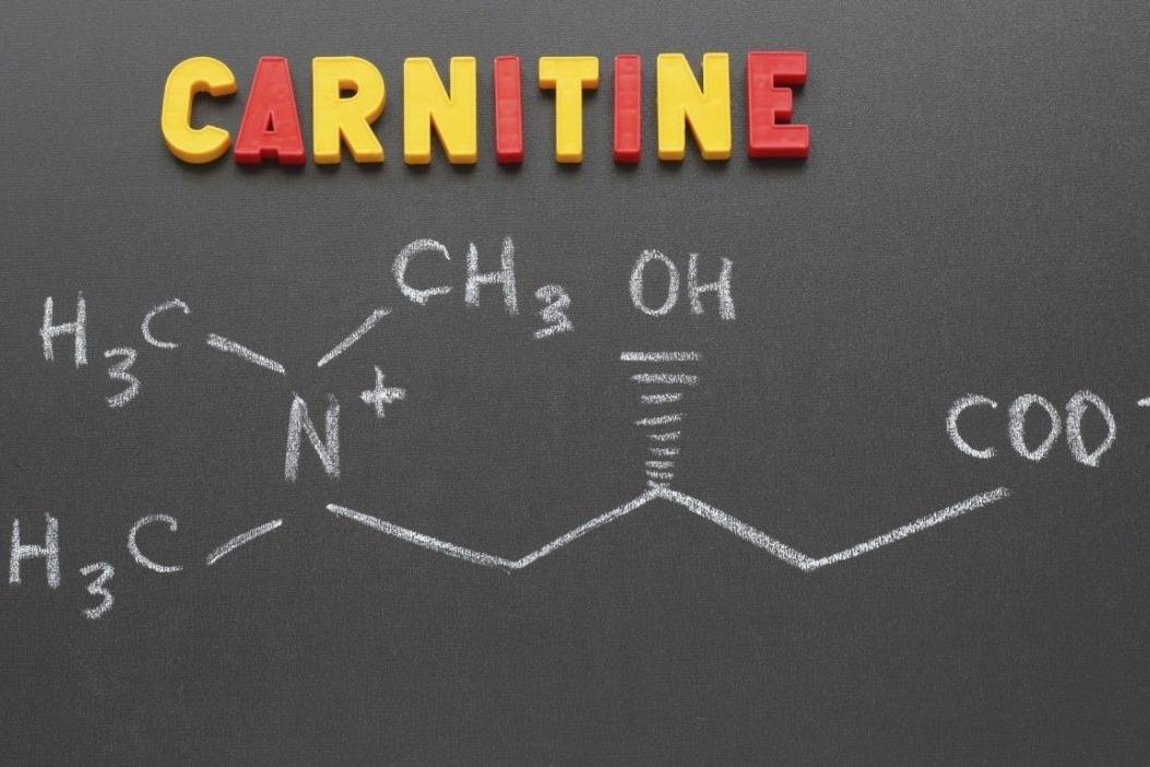¿Qué es la L-carnitina?