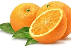 ¿Que es la vitamina C?