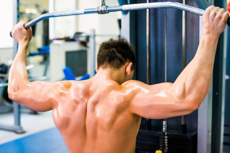 ¿Qué músculos trabaja la polea al pecho?