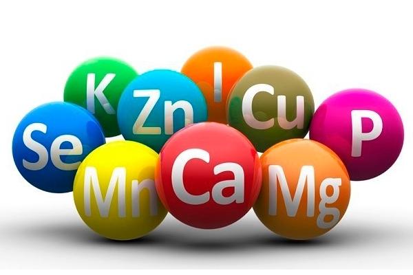 ¿Que son las vitaminas?