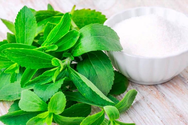 Stevia - Edulcorante natural