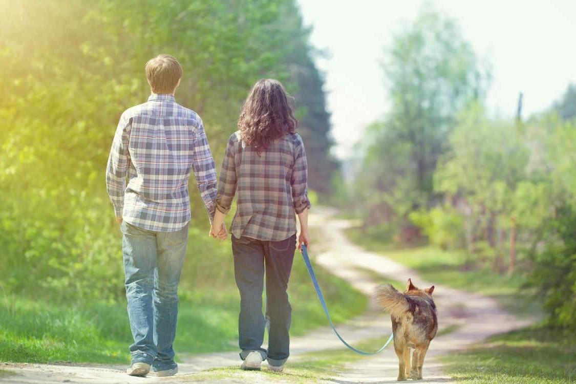 Qué tipo de actividades son recomendables en este caso - Caminar