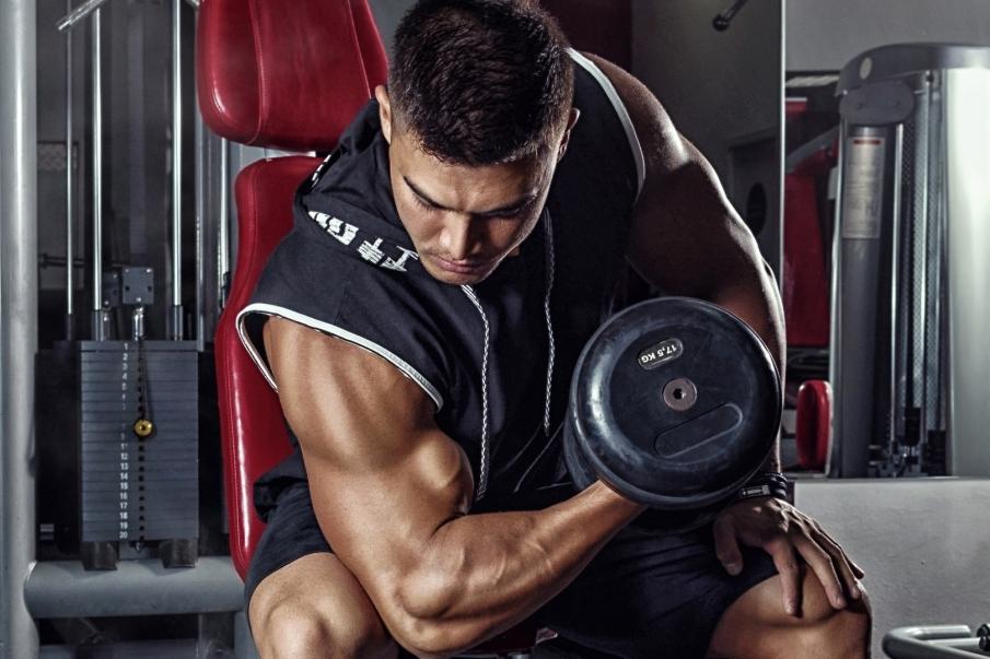 Tipos de fibras musculares y sus características