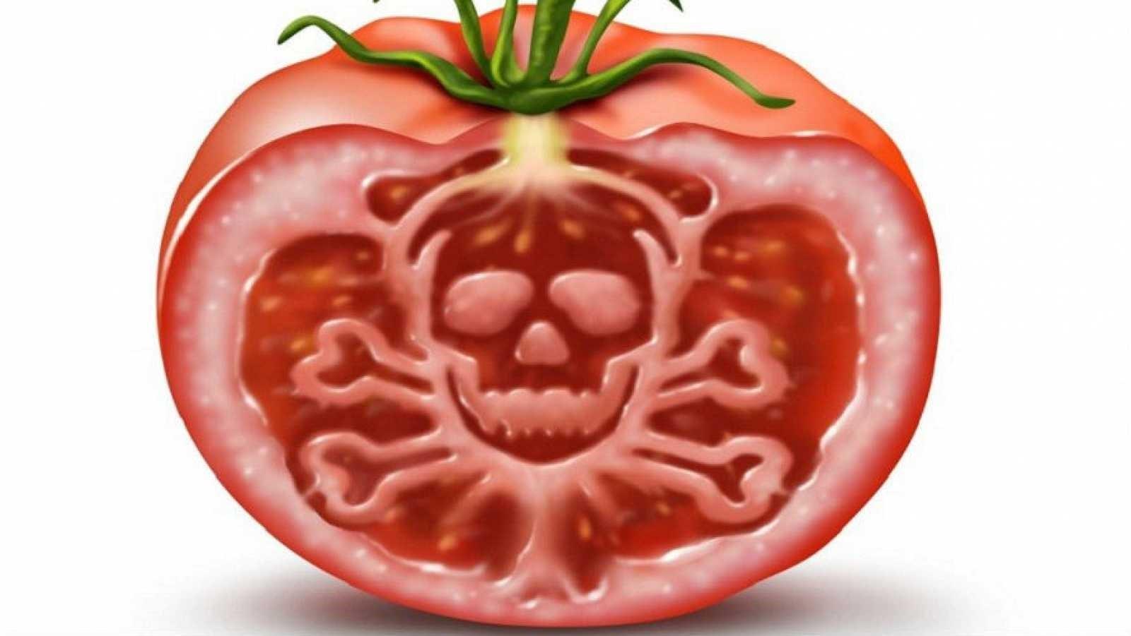Tóxicos y toxinas que ingerimos a través de nuestra alimentación